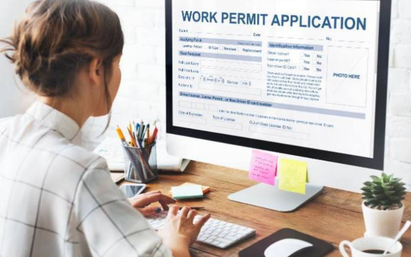 Working Without a Work Permit or Labour Market Impact Assessment